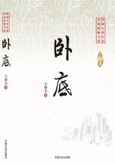 卧底(中国专业作家小说典藏文库)