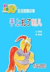 幼儿画报30年精华典藏﹒手上扎了刺儿(多媒体电子书)(仅适用PC阅读)