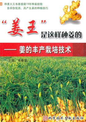 """""""姜王""""是这样种姜的:姜的丰产栽培技术"""