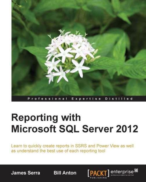 Reporting with Microsoft SQL Server 2012