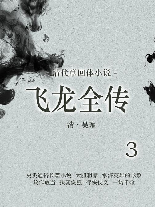 清代章回体小说 :飞龙全传(3)