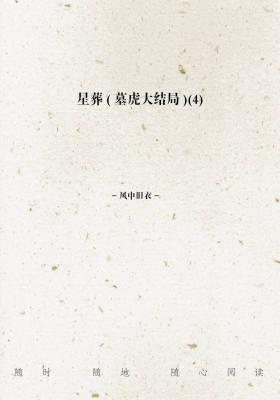 星葬(墓虎大结局)(4)