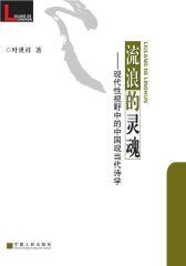 流浪的灵魂:现代性视野中的中国现当代诗学