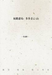 权路迷局:步步青云(2)