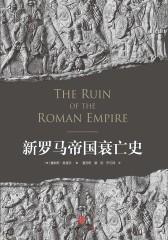 新罗马帝国衰亡史