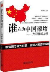 谁在为中国添堵:大国崛起之痛(试读本)