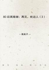 80后离婚潮:再见,枕边人(3)