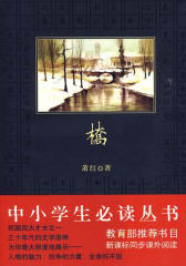 中小学生必读丛书:桥