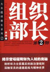 官场小说:组织部长Ⅱ