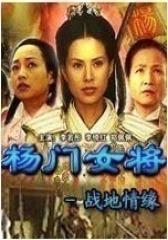杨门女将战地情缘(影视)