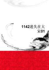 1142迷失在大宋01