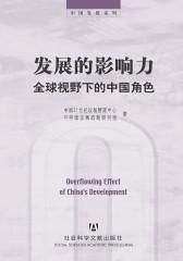 发展的影响力:全球视野下的中国角色