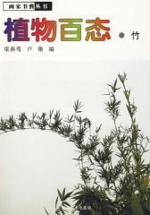 植物百态·竹(仅适用PC阅读)