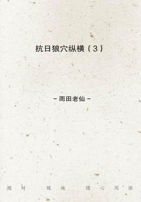 抗日狼穴纵横(3)