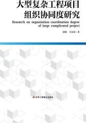 大型复杂工程项目组织协同度研究