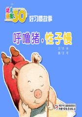 幼儿画报30年精华典藏﹒(呼噜猪,性子慢)(多媒体电子书)(仅适用PC阅读)