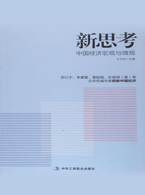 新思考:中国经济宏观与微观