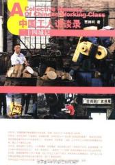 二十四城记:中国工人访谈录