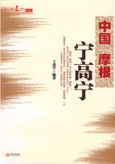 中国摩根宁高宁(试读本)