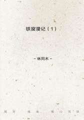 铁窗漫记(1)