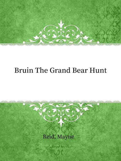 Bruin The Grand Bear Hunt