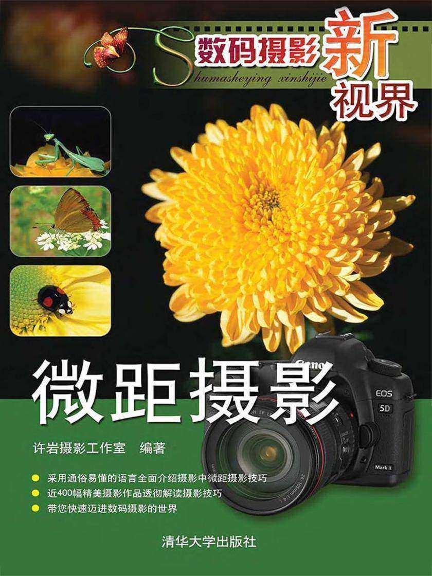 数码摄影新视界——微距摄影