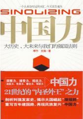 中国力(试读本)