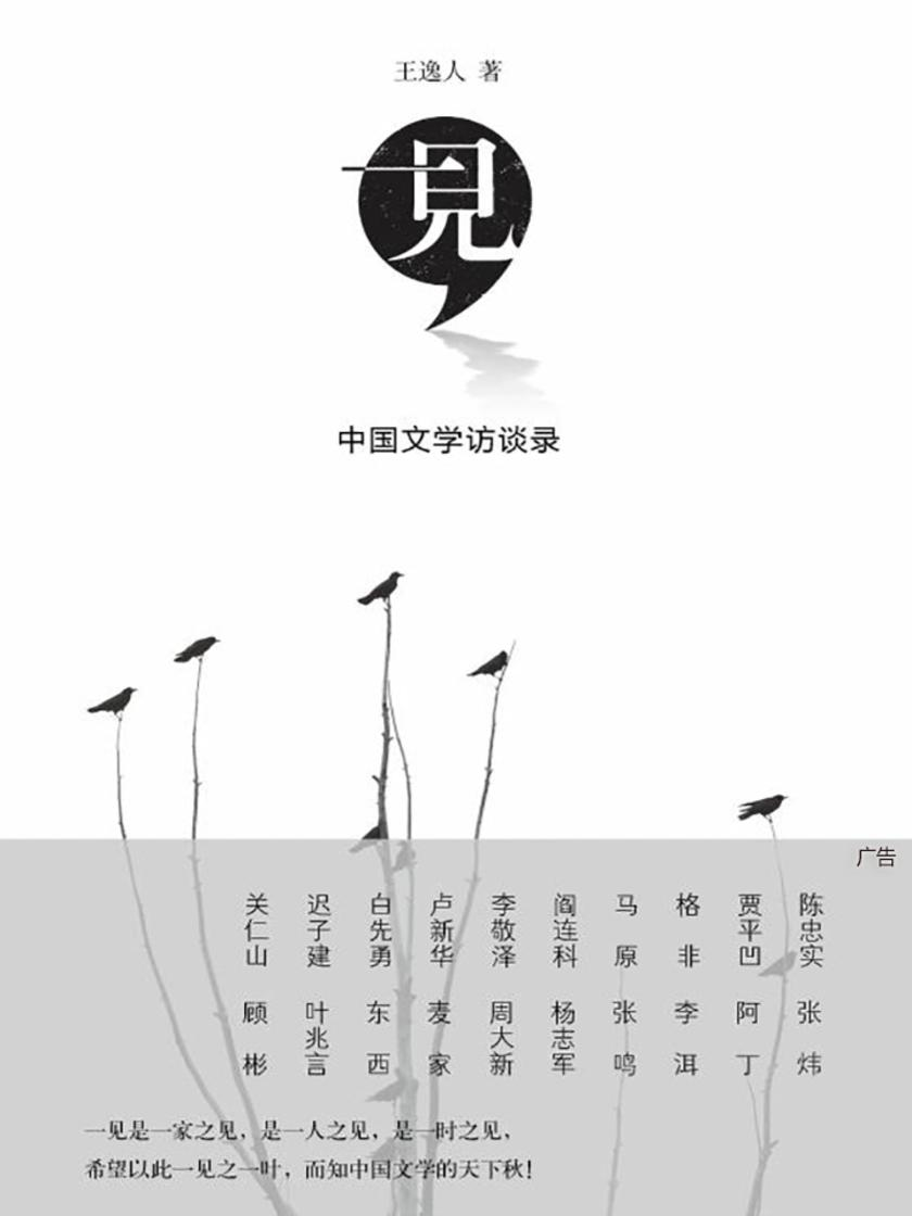 一见:中国文学访谈录
