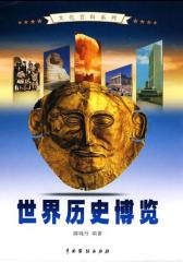 世界历史博览2