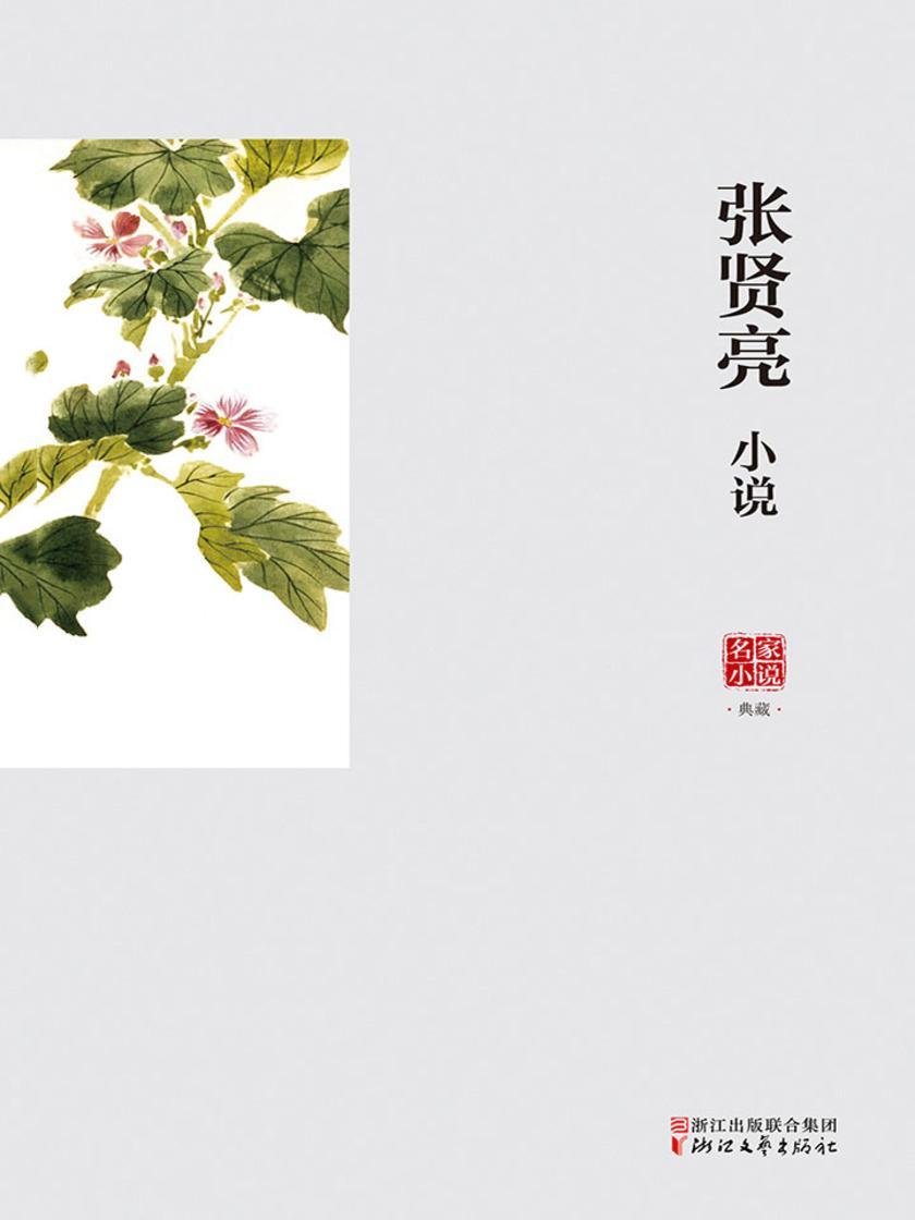 张贤亮小说