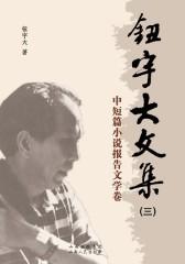 钮宇大文集(三):中短篇小说报告文学卷