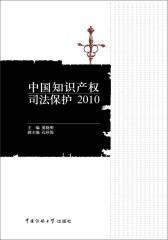 中国知识产权司法保护2010