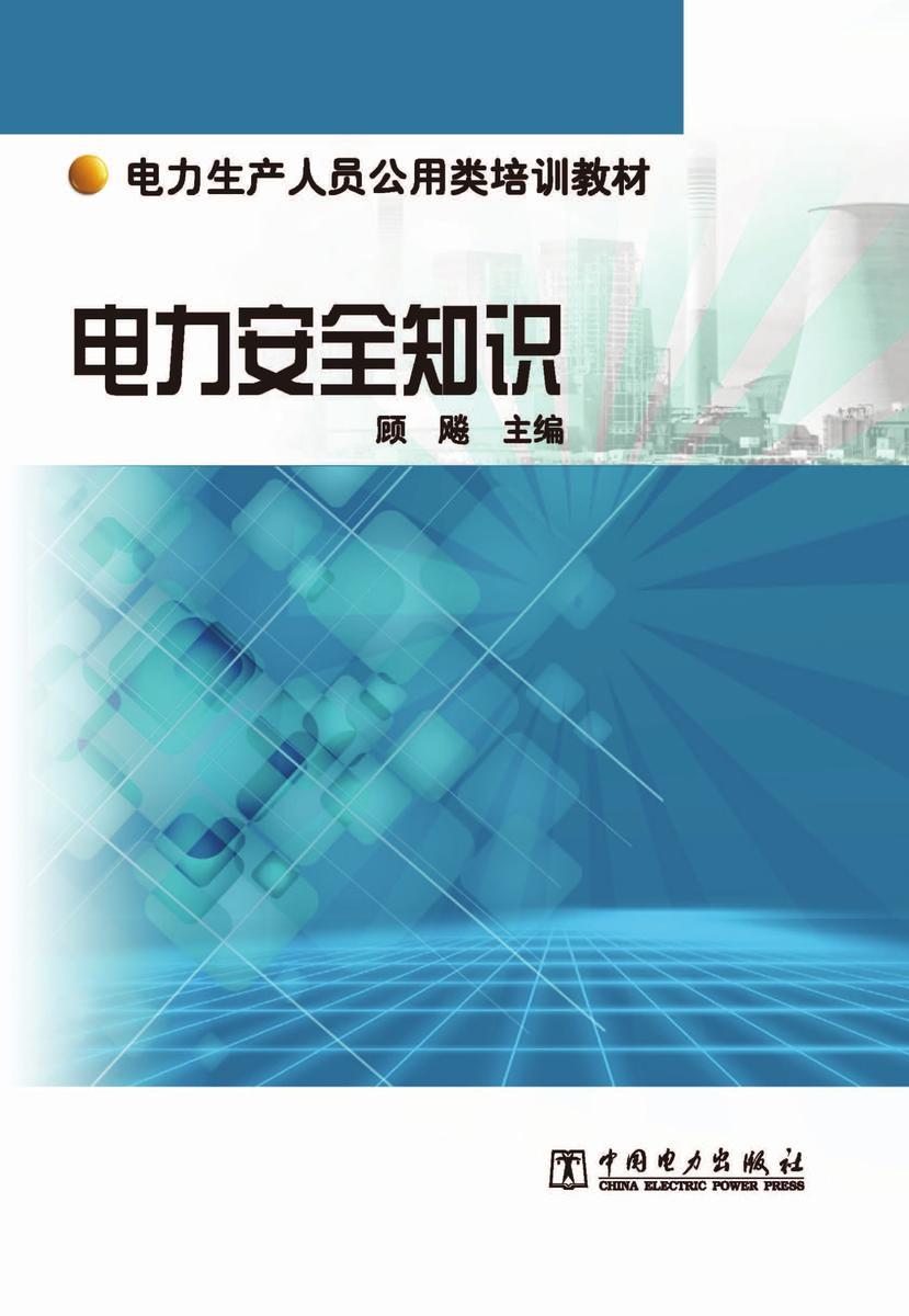 电力生产人员公用类培训教材 电力安全知识