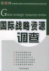国际战略资源调查