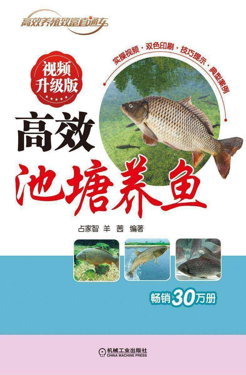 高效池塘养鱼 视频升级版