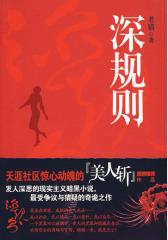 深规则(超震撼现实主义暗黑小说,讲述欢场背后的商场与官场!)(试读本)