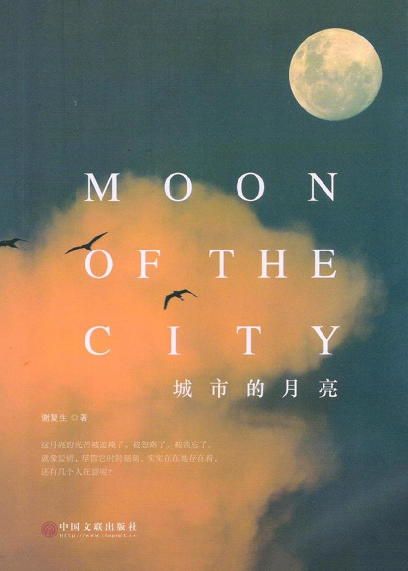 城市的月亮