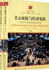 美元霸权与经济危机(上、下册)(试读本)