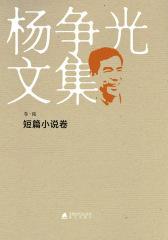 杨争光文集短篇小说
