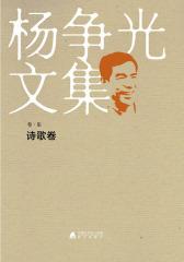 杨争光文集诗歌卷