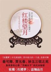 红楼望月:从秦可卿解读《红楼梦》