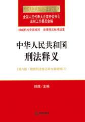 中华人民共和国刑法释义