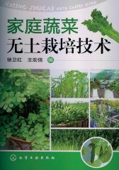 家庭蔬菜无土栽培技术