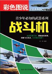 彩色图说青少年必知的武器系列——战斗机