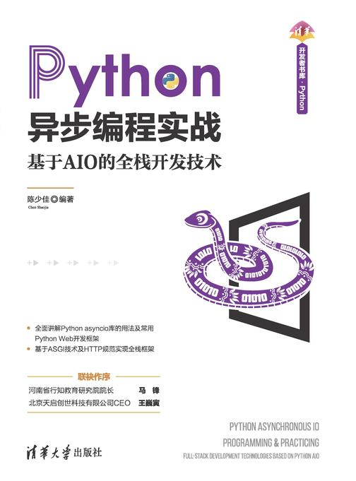 Python异步编程实战——基于AIO的全栈开发技术