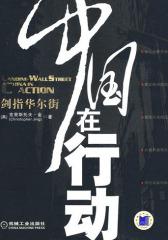 剑指华尔街:中国在行动(试读本)