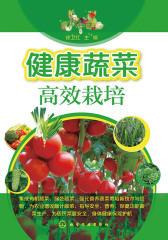 健康蔬菜高效栽培