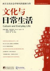 文化与日常生活(社会学新经典译丛)