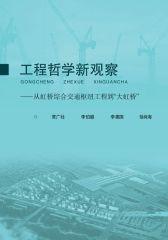 """工程哲学新观察:从虹桥综合交通枢纽工程到""""大虹桥"""""""