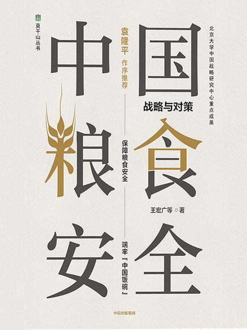 中国粮食安全:战略与对策
